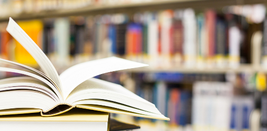 Publications du CES